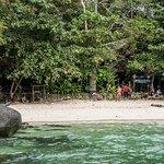 Viking Natures Resort Photo