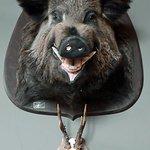 Un sourire accueillant du musée de la chasse...