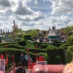 park from Alice labirint
