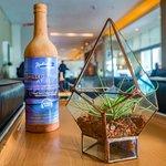 Radisson Blu Gautrain - Glass terrariums