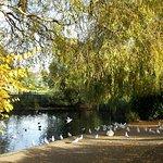 Autumn - Pond
