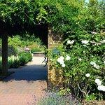 Park House Sensory Garden
