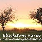 Summer nights at Blackstone