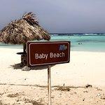 Around Aruba Tours ภาพถ่าย