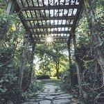 Skylands NJ Botanical Gardens - May 2018