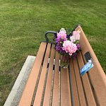 A memorial bench for a 14 year old girl