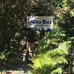 Gala Gala Eco Resort照片