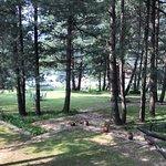 WelcomHotel Pine N Peak Pahalgam - Member ITC's Hotel Group Photo
