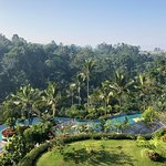 We stayed at Padma Resort Ubud for 3 nights I wish it was 10 the most amazing place so tranquil