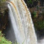 Wailua Falls ภาพถ่าย