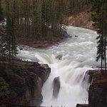Foto van Sunwapta Falls and Canyon