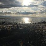Shady Shores Beach Resort Photo