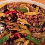 Gong Bao Su Ji (spicy Sichuan dish)