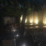 Foto de Restaurante Natural Terra