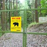 熊が多い場所のようです。ヤバいですねー