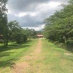 Koiwai Farm照片