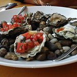 Oysters, tasty but poorly shucked.