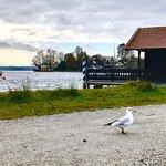 Starnberger See Foto