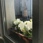 вид из окна на лицей