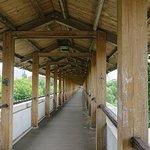 Rostokinsky Aqueduct照片