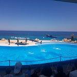 Foto di Mediterraneo Marine Park