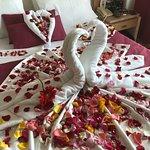Our honeymoon year 4
