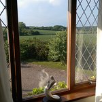 Bilde fra The Retreat Greyabbey Bed & Breakfast