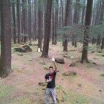 Photo de Van Vihar National Park