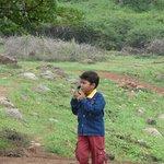 Foto de Yelagiri Hills
