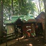 Wonderland ภาพถ่าย