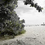 ภาพถ่ายของ เกาะไผ่