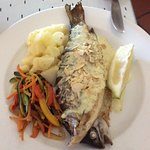 Grilled mouthwatering fish