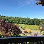 Foto Cristom Vineyards