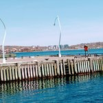 Фотография Segway Nova Scotia