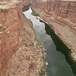 Фотография Colorado River Discovery