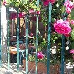 La Porte Verte照片