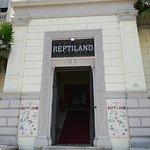 Fotografia de Reptiland