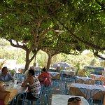Small Paradise Taverna Photo