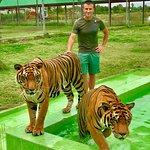 Foto de Damnoen Saduak Tiger Zoo