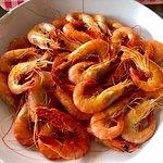Patio Del Sol Seafood Restaurantの写真