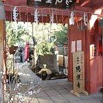 Younji Temple照片