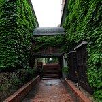 Photo of Kurashiki Ivy Square