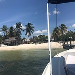 Photo of Holbox Whale Shark Tours with Willy's Tours