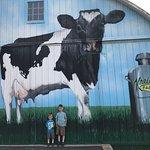 Kreider Farms照片