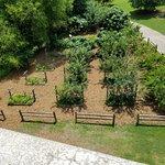 Foto di Parco Piedmont