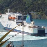 On our drive into Picton - spotted our ship docking.