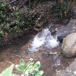 Alameda de Quebrada Vieja照片