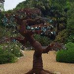 Tree of ♡