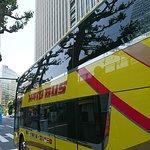 Photo of Hato Bus