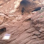 天山神秘大峡谷照片